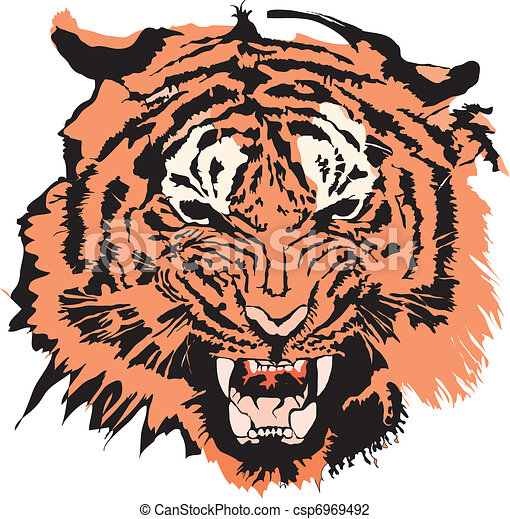 Tiger in colour made in Eps - csp6969492