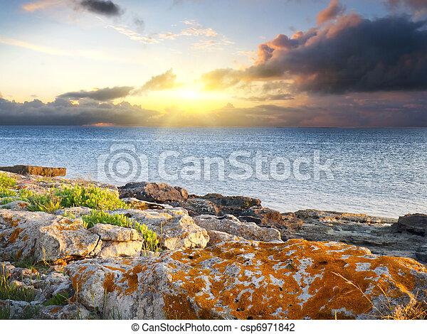 Nature composition - csp6971842