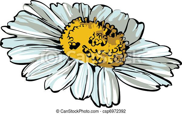 daisy wheel - csp6972392