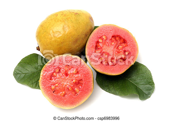 Fresh Guava fruit with leaves on white background  - csp6983996