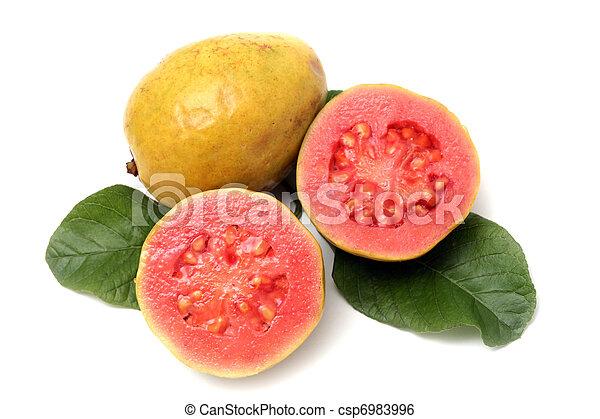 葉, フルーツ, 背景, 新たに, 白, グアバ - csp6983996