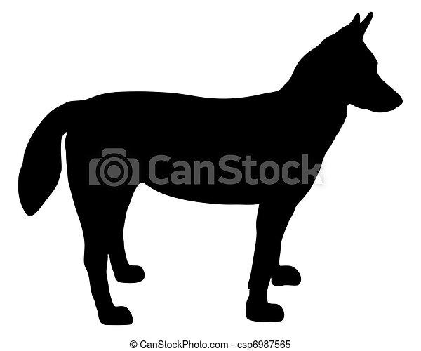 Alaskan Husky silhouette - csp6987565