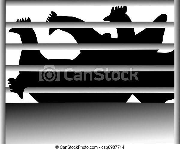 Caging of hen - csp6987714