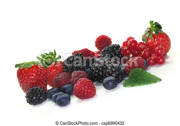 Berries - csp6990432