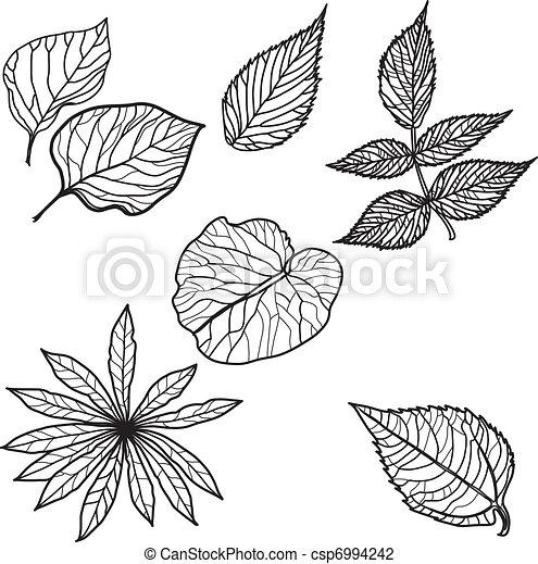 Vector set of autumn leafs - csp6994242