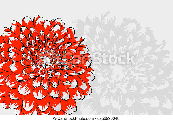Floral background - csp6996048
