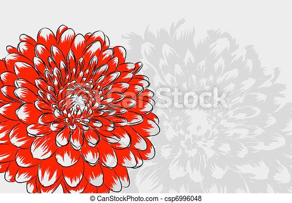 Floral background - csp6996048