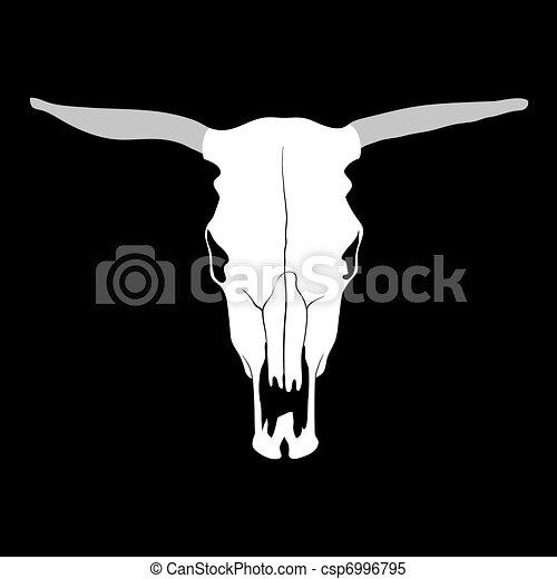 Cow skull - csp6996795