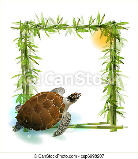 tropical  background with bamboo, sun and sea turtle. - csp6998207
