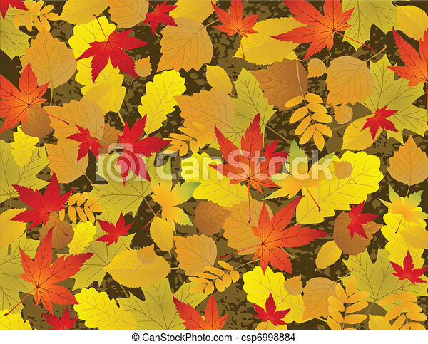 Autumn leaf background - csp6998884