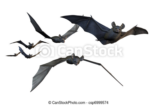 Bats Flying - on White - csp6999574