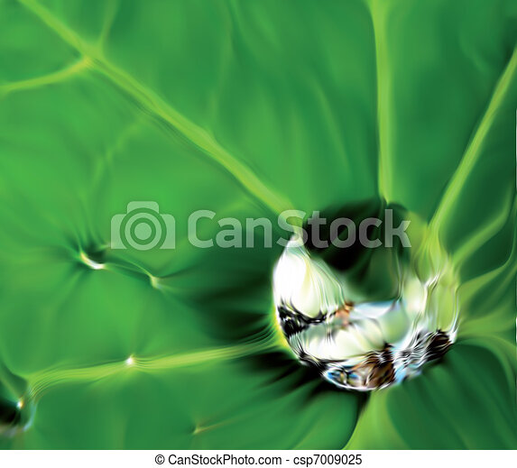 Close up waterdrop of the leaf tip. Vector - csp7009025