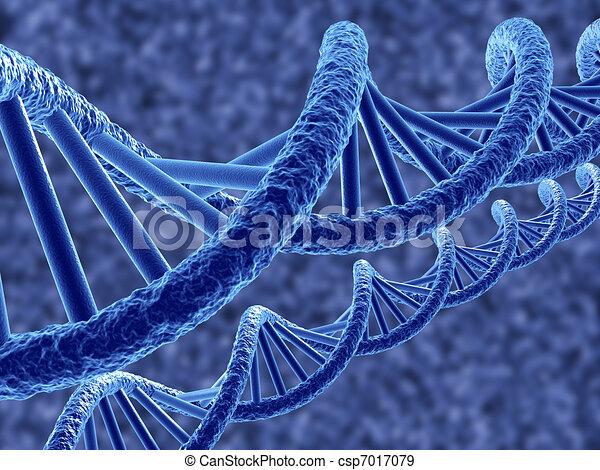 DNS - csp7017079