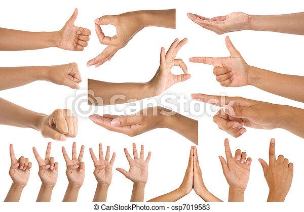 woman hand gestures - csp7019583