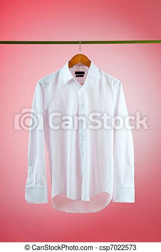 Shirt hanging on the hanger - csp7022573
