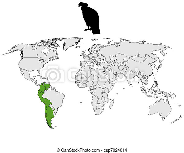 Andean Condor distribution - csp7024014