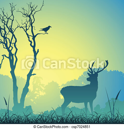 Male Stag Deer - csp7024851