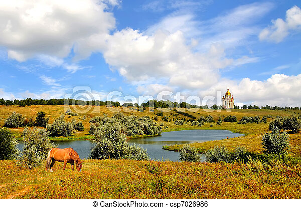 Rural landscape of horse grazing - csp7026986