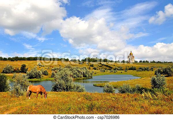 Rural landscape of horse grazing - csp7026986