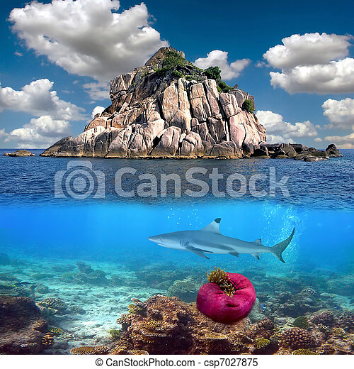 Tropical paradise and corals on a reef top - csp7027875