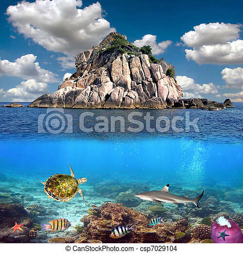Coral island and reef sharks, Siam Bay, Thailand - csp7029104