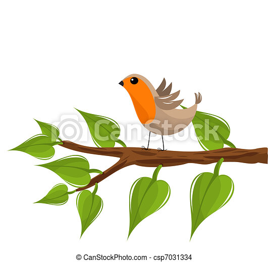 Robin bird on branch - csp7031334
