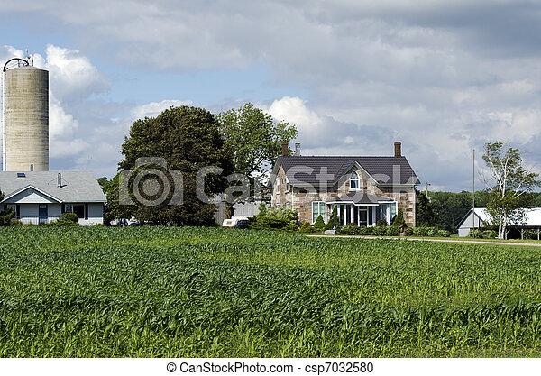 American farm house organic with corn field - csp7032580