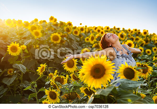 woman on blooming sunflower field - csp7036128