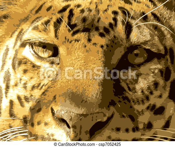 Close-up Leopard Face Front View Vector - csp7052425