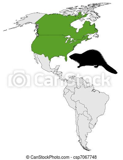 Distribution of canadian beaver  - csp7067748