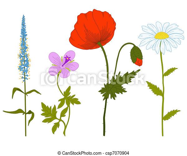 Vector field flowers. - csp7070904