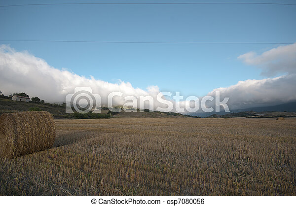 agriculture conceptual: still life, relax, rural, agriculture - csp7080056