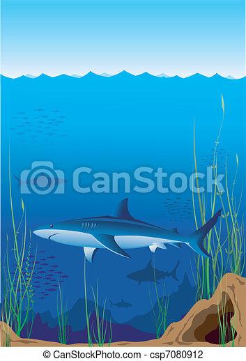 underwater world - csp7080912