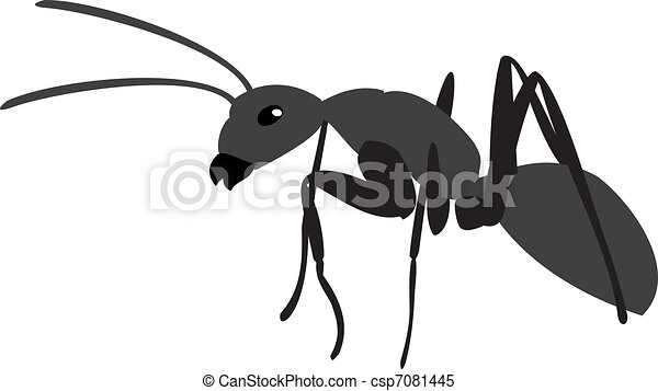Black Ants Clipart Black Ant The Big Ant