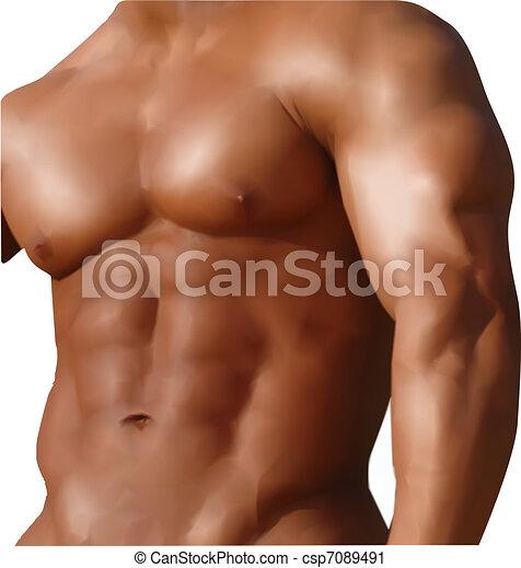 Muscular man with naked torso. Vector - csp7089491