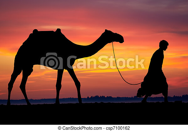 Silhouette of Arab with camel at sunrise - csp7100162