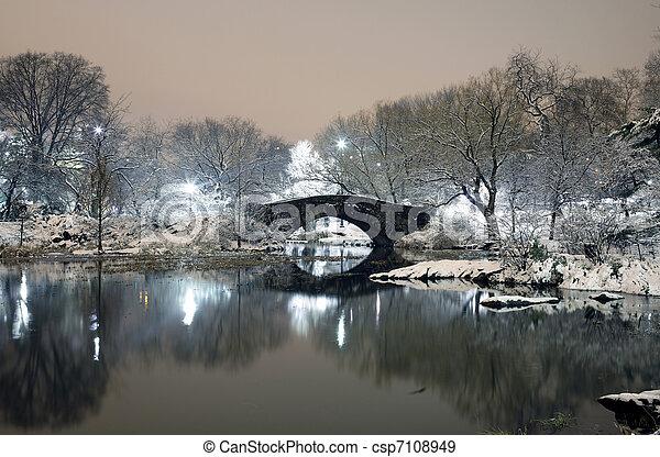 Central Park at night NYC - csp7108949