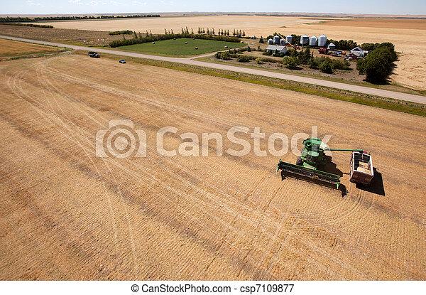 Harvest and Farm - csp7109877