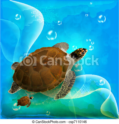 turtles family swimming in the ocean  - csp7110146