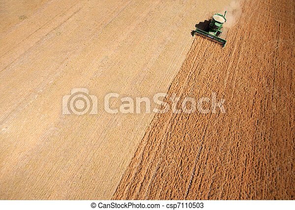 Harvest Background Abstract - csp7110503