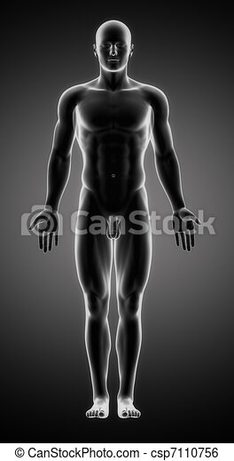Male figure in anatomical position - csp7110756