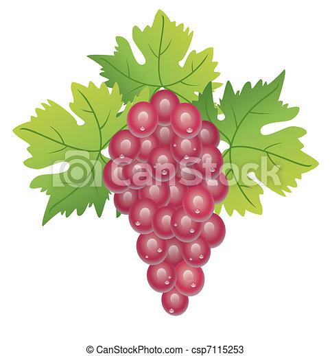 grape cluster - csp7115253