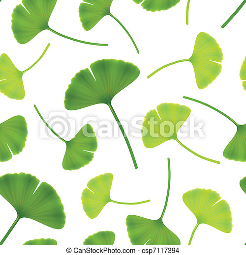 Leaves of ginkgo bilboa. Seamless vector illustration. - csp7117394
