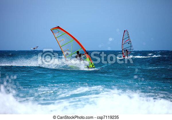 Wind surfing in the summer  - csp7119235