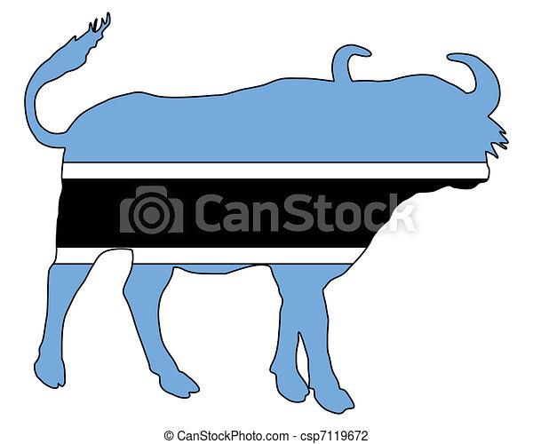 Botswana buffalo  - csp7119672