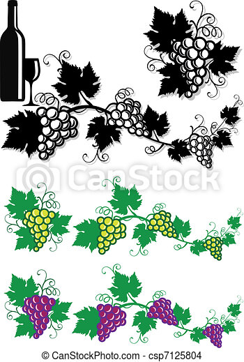 grapes and vine leaves, vector back - csp7125804