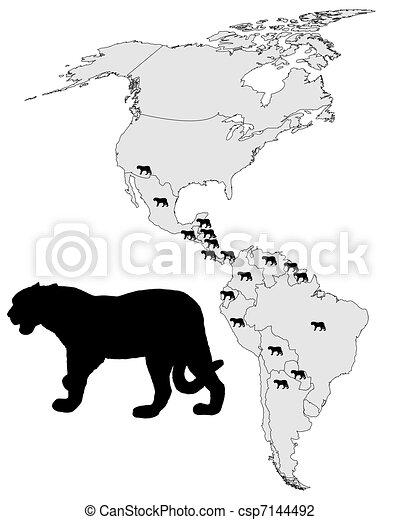 Jaguar distribution - csp7144492
