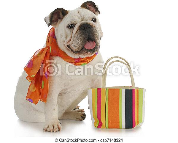 fancy dog - csp7148324