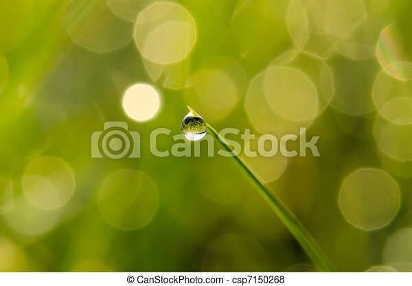 Drop of water on blade of grass - csp7150268