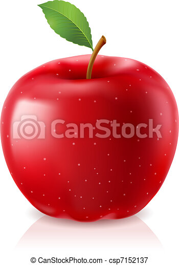 Delicious red apple - csp7152137